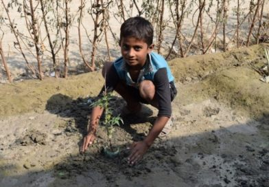 Tree Plantation to prevent Global Warming at Hyderabad-Pakistan
