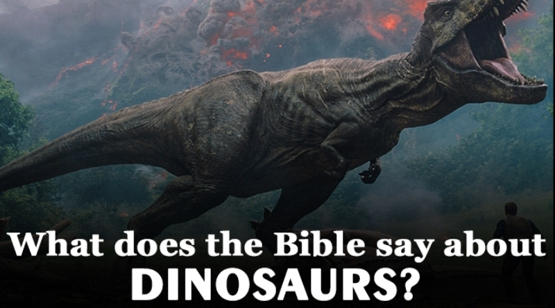 What does the Bible say about dinosaurs? Find answer here